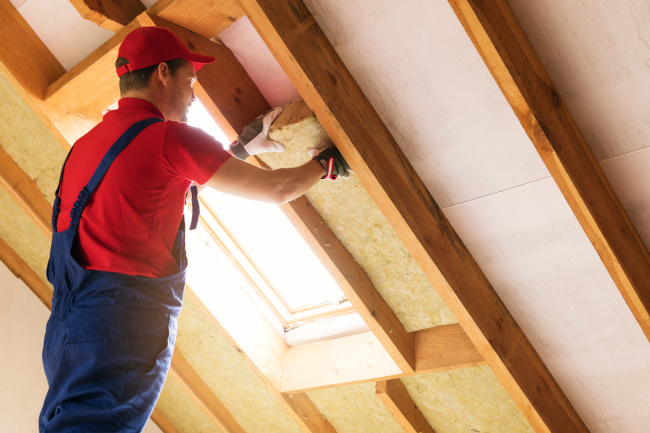 Do You Need Insulation Removal?