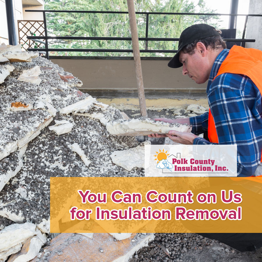 You Can Count on Us for Insulation Removal