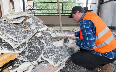 Why You Should Hire a Professional Insulation Removal Company